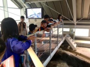 2013年「夢と希望と絆の架け橋」北淡記念公園29